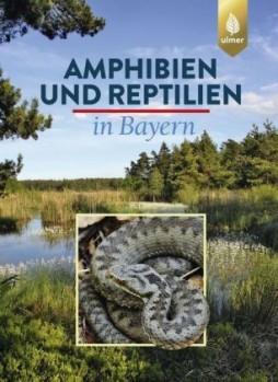 Amphibien und Reptilien in Bayern