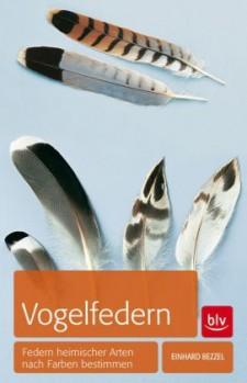 Vogelfedern - Federn heimischer Arten bestimmen