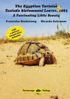 The Egyptian Tortoise - Testudo kleinmanni LORTET, 1883. A Fascinating Little Beauty