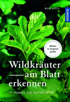 Wildkräuter am Blatt erkennen – 64 essbare Arten