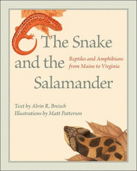 The Snake and the Salamander – Reptiles and Amphibians from Maine to Virginia