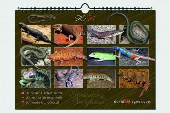 Skinke und Gürtelschweife/Skinks and Girdled Lizards 2021