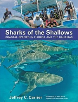 Sharks of the Shallows – Coastal Species in Florida and the Bahamas