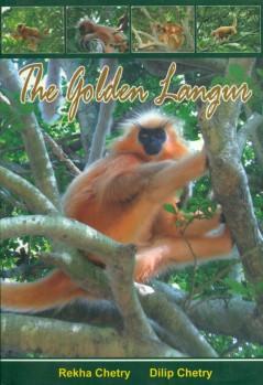The Golden Langur