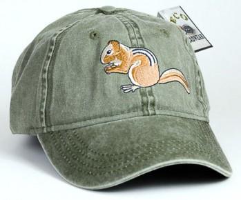 Chipmunk – Streifenhörnchen