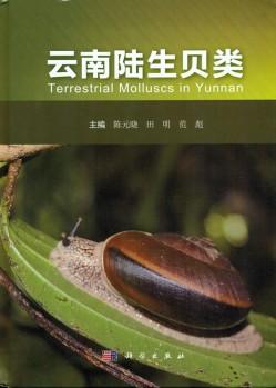 Terrestrial Molluscs in Yunnan