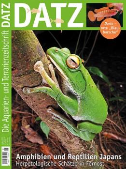 August 2020 Amphibien und Reptilien Japans
