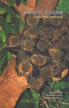Bats of Odisha – a pictorial handbook