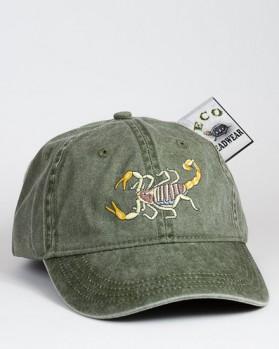 Desert Hairy Scorpion – Haariger Wüstenskorpion