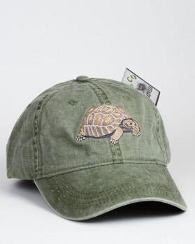 Desert Tortoise – Kalifornische Gopherschildkröte