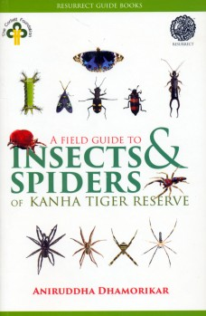 A Field Guide to Insects & Spiders of Kanha Tiger Reserve