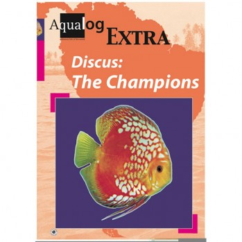 Discus - The Champions