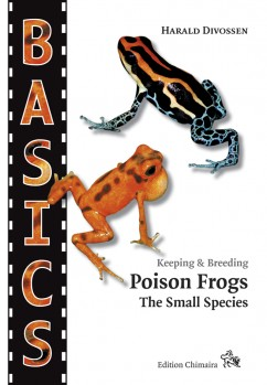 Poison Frogs. The Small Species