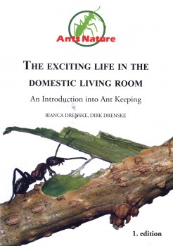 The Exciting Life in the domestic Living Room – An Introduction into Ant Keeping