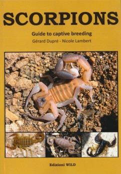 SCORPIONS – Guide to captive Breeding