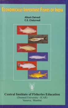 Economically Important Fishes of India