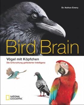 Bird Brain - Vögel mit Köpfchen - Die Erforschung gefiederter Intelligenz