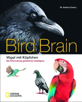 Bird Brain – Vögel mit Köpfchen – Die Erforschung gefiederter Intelligenz