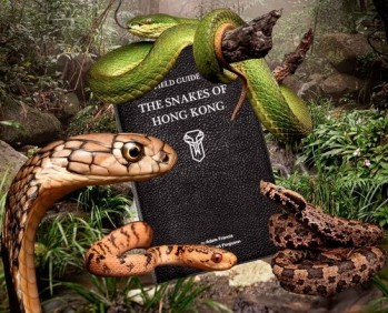 A Field Guide to the Snakes of Hong Kong