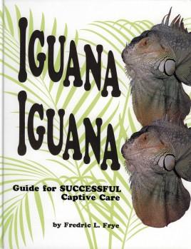 Iguana iguana - Guide for successful captive care