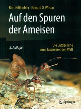 Auf den Spuren der Ameisen - die Entdeckung einer faszinierenden Welt