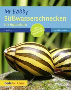 Süßwasserschnecken im Aquarium