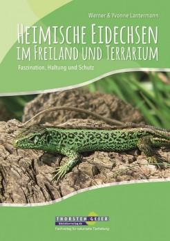 Heimische Eidechsen im Freiland und Terrarium – Faszination, Haltung und Schutz