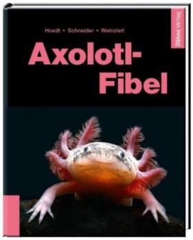 Axolotl-Fibel – Ein Exot erobert unsere Aquarien