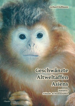 Geschwänzte Altweltaffen Asiens - Makaken, Schlank- & Stummelaffen