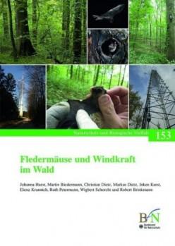 Fledermäuse und Windkraft im Wald