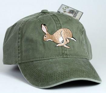 Jack Rabbit – Kalifornischer Eselhase