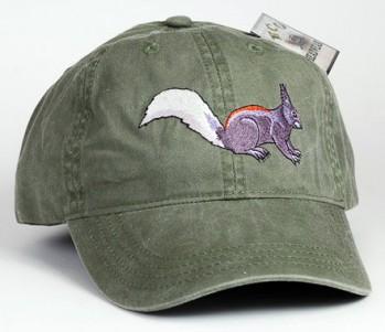 Kaibab Squirrel – Kaibabhörnchen