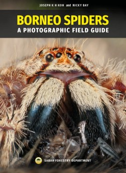 Borneo Spiders - A Photographic Field Guide
