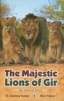 The Majestic Lions of Gir - An Untold Story
