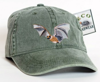 Little Brown Bat – Kleine Braune Fledermaus