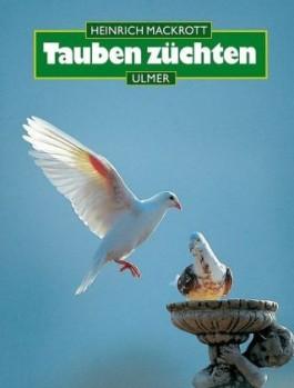 Tauben züchten