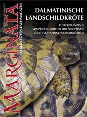 Heft 10 Dalmatinische Landschildkröte