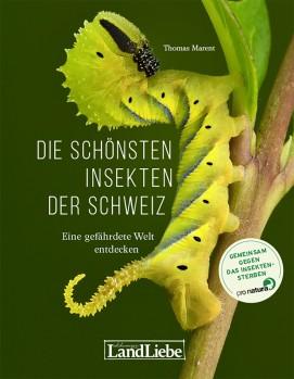 Die schönsten Insekten der Schweiz - Eine gefährdete Welt entdecken
