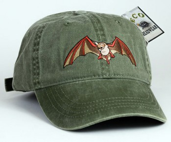 Mexican Free-tail Bat – Mexikanische Bulldoggfledermaus