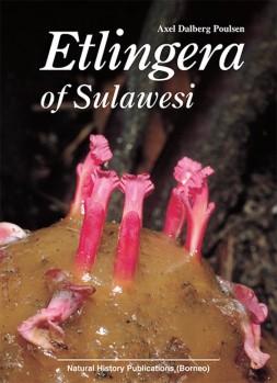 Etlingera of Sulawesi