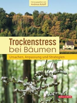 Trockenstress bei Bäumen - Ursachen, Anpassung und Strategien