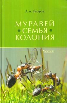 Die Ameise · Familie · Kolonie