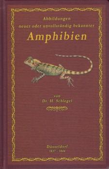 Abbildungen neuer oder unvollständig bekannter Amphibien, nach der Natur oder dem Leben entworfen – TEXTBAND