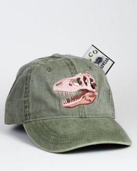 T-Rex Skull – Tyrannosaurus rex-Schädel