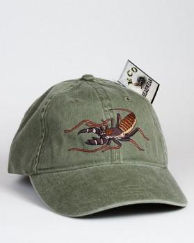 Vinegaroon or Whip Scorpion – Geißelskorpion