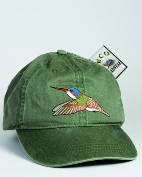 Violet-crowned hummingbird – Veilchenscheitelamazilie
