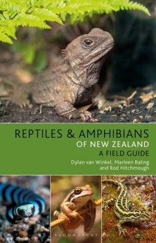 Reptiles and Amphibians of New Zealand - A Field Guide
