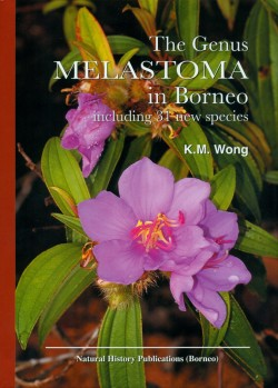 The genus Melastoma in Borneo – Including 31 new species