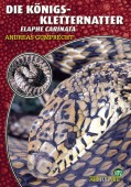 Die Königskletternatter Elaphe carinata
