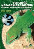 Der Große Madagaskar Taggecko, Phelsuma madagascaiensis grandis
